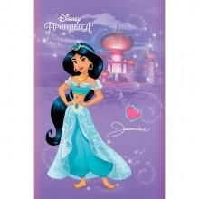 """Блокнот """"Hatber"""", 48л, А7, клетка, 3 цветный блок, ламинация, на клею, серия """"Принцесы №1 - Disney"""""""