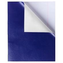 """Тетрадь """"Hatber"""", 48л, А5, клетка, обложка бумвинил, на скобе, серия """"Синяя"""""""
